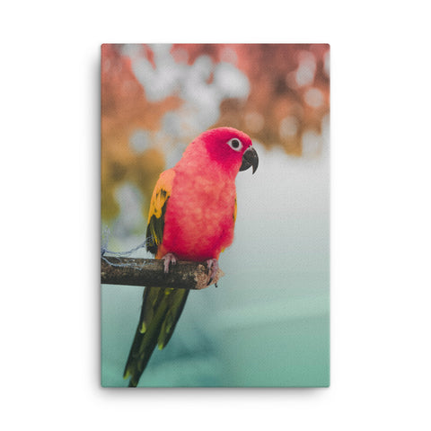 Parrot Canvas Wraps