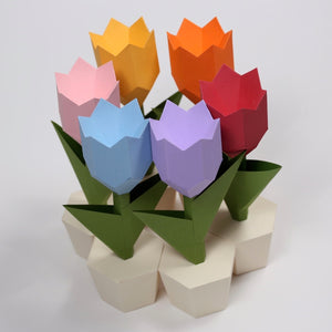 Tulip Kit - Low Poly Crafts
