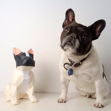 Load image into Gallery viewer, Bulldog Kit - Low Poly Crafts
