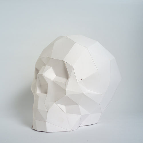 Skull kit - Low Poly Crafts