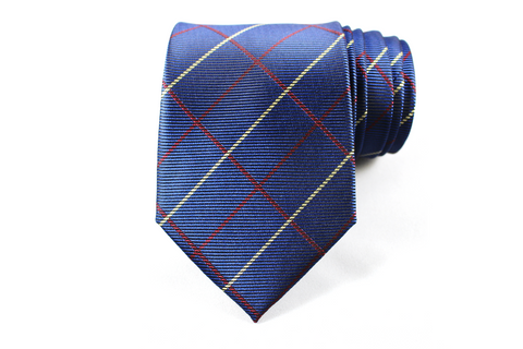 Property Mover Silk Tie - Knot Tied Down