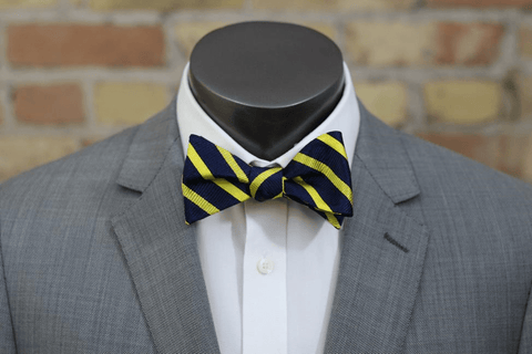 The Game - Maize and Blue Striped Edition Silk Bow Tie