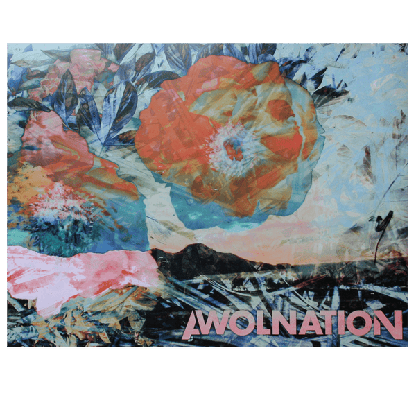 AWOLNATION Leaf Poster