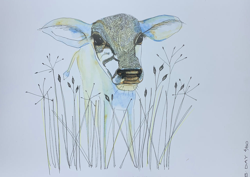 Sunday Love Wall Art - COW
