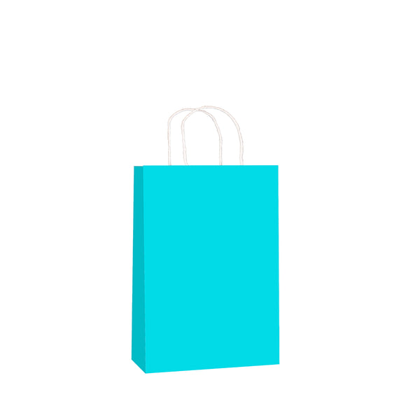 Sky Blue Kraft w/twist handle  (price per 250) - BagMasters