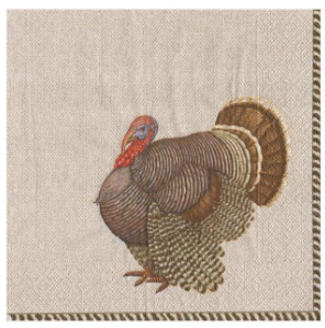 Thomas T. Byrd Thanksgiving Cocktail Napkins