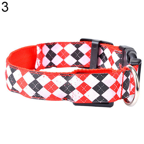 Rhombus Patterned Light Up Dog Collar Giveaway
