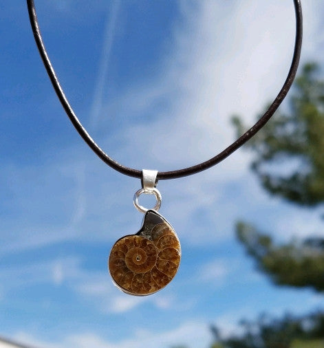 Ammonite Fossil Pendant Necklace