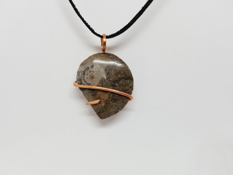 Ammonite Fossil Copper Wire Pendant Necklace