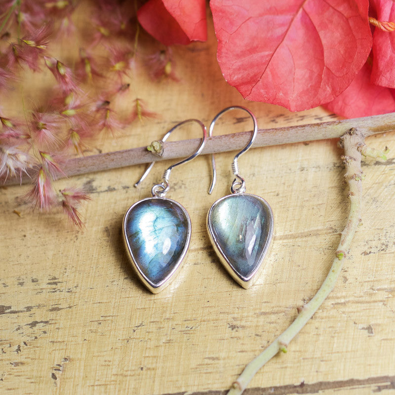 Labradorite Earrings - Pointed Edge