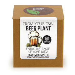 Grow Your Own Beer Hops Plant Kit