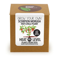 Grow Your Own Scorpion Moruga Chilli Plant Kit