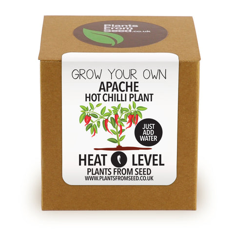 Grow Your Own Apache Chilli Plant Kit