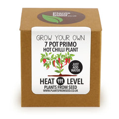 Grow Your Own 7 Pot Primo Chilli Plant Kit