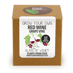Grow Your Own Red Grape Plant Kit