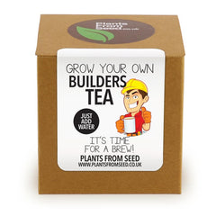 Grow Your Own Builders Tea Plant Kit