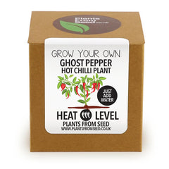 Grow Your Own Ghost Pepper Chilli Plant Kit