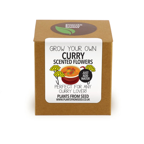 Grow Your Own Curry Flowers Plant Kit