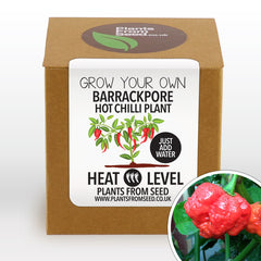 Grow Your Own 7 Pot Barrackpore Chilli Plant Kit