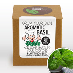 Grow Your Own Fresh Basil Plant Kit