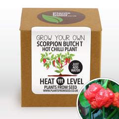 Grow Your Own Scorpion Butch T Chilli Plant Kit
