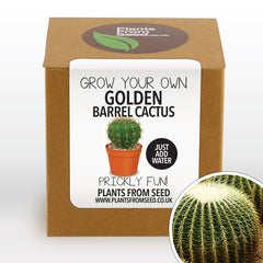 Grow Your Own Golden Barrel Cactus Plant Kit