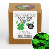 Grow Your Own Good Luck Clover Plant Kit