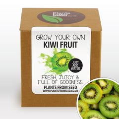 Grow Your Own Kiwi Fruit Plant Kit