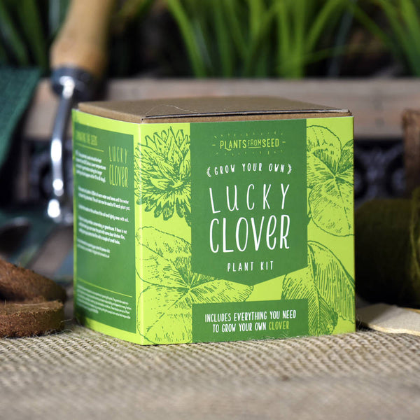 Grow Your Own Lucky Clover Plant Kit