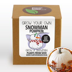 Grow Your Own Snowman Pumpkin Plant Kit