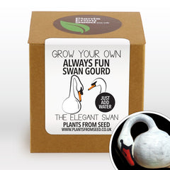 Grow Your Own Swan Gourd Plant Kit