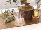 Rustic gold theme solemnization package
