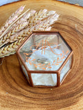 Rose gold hexagon glass box ring pillow