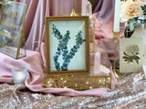 Wooden frames with leaves design