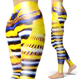 Royal Angelfish Leggings