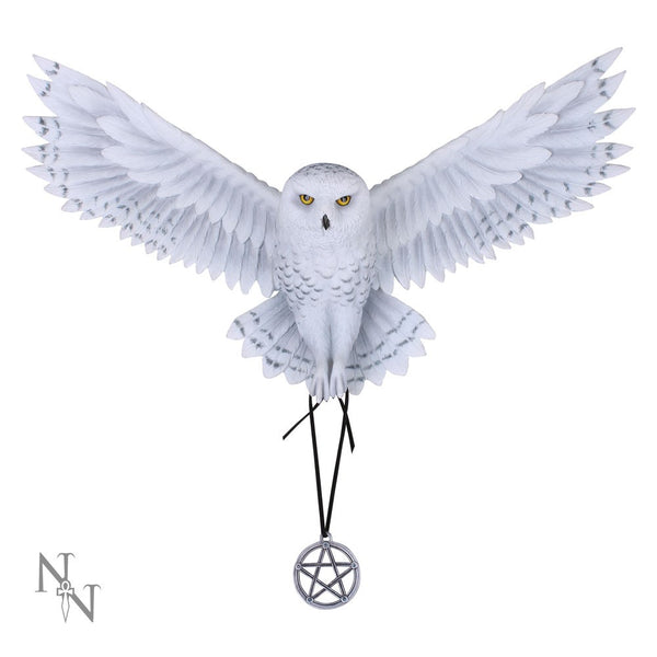 Awaken Your Magic Snowy Owl Wall Ornament - (Anne Stokes)
