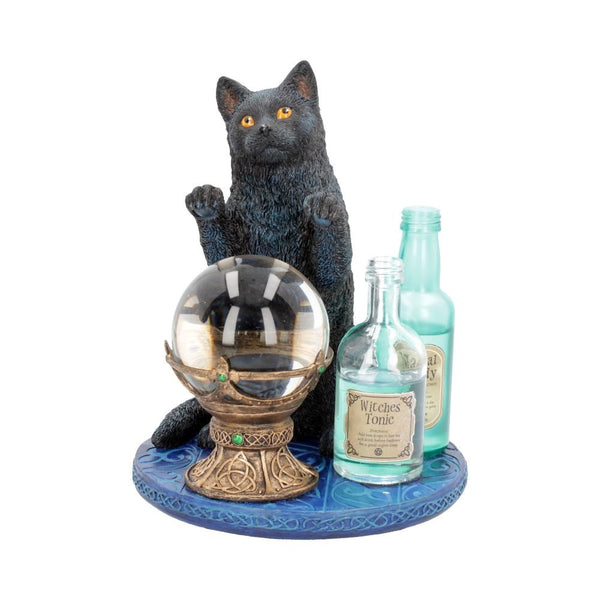The Witches Apprentice Black Cat Ornament 19.5cm