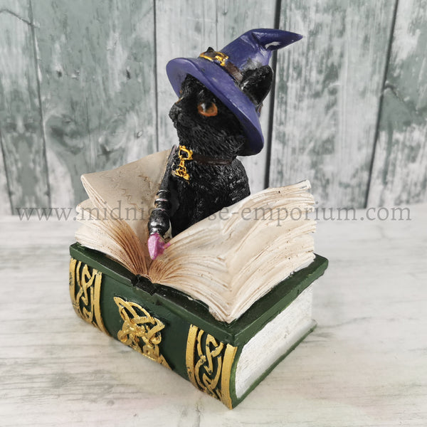 'Binx' Black Cat & Spell Book Figurine 12.7cm