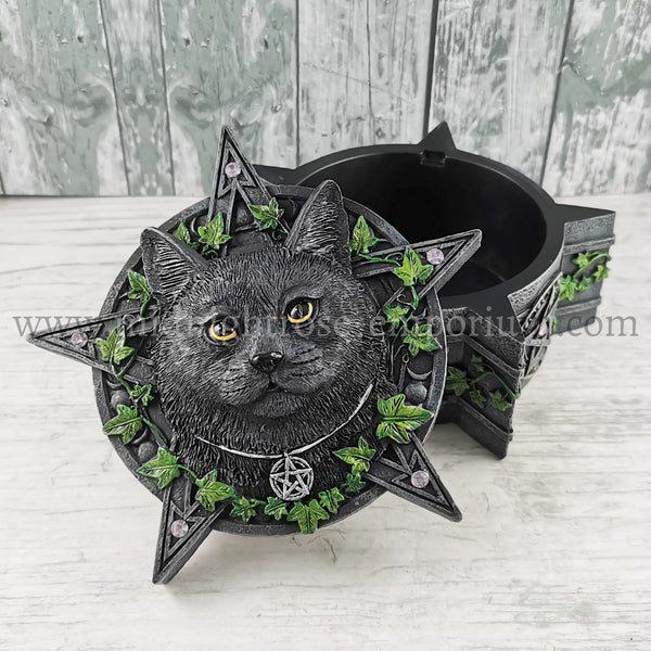The Charmed One Black Cat Trinket Box 14.5cm