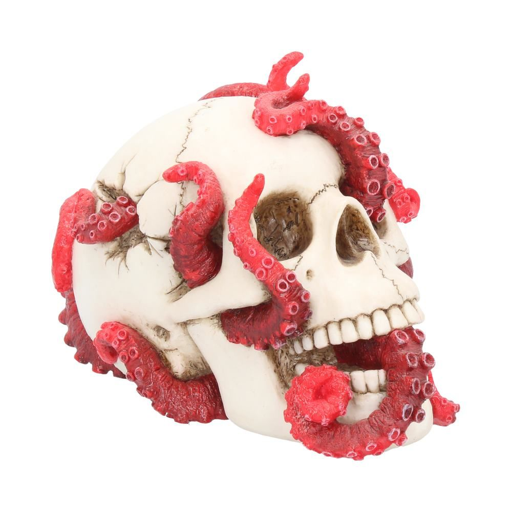 Devoured Skull Ornament 24.5cm