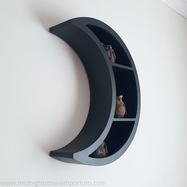 Crescent Moon Display Shelf - Black Magic Collection
