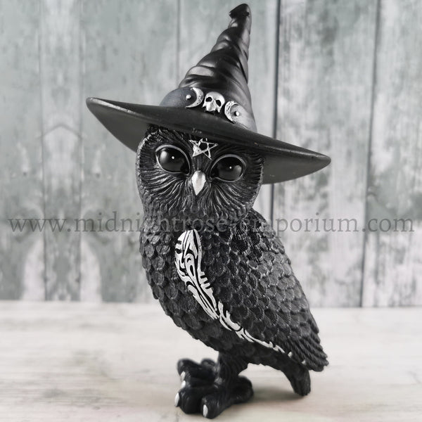 'Owlocen' Witch Owl Ornament 13.5cm