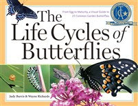 The Lifecycle of Butterflies