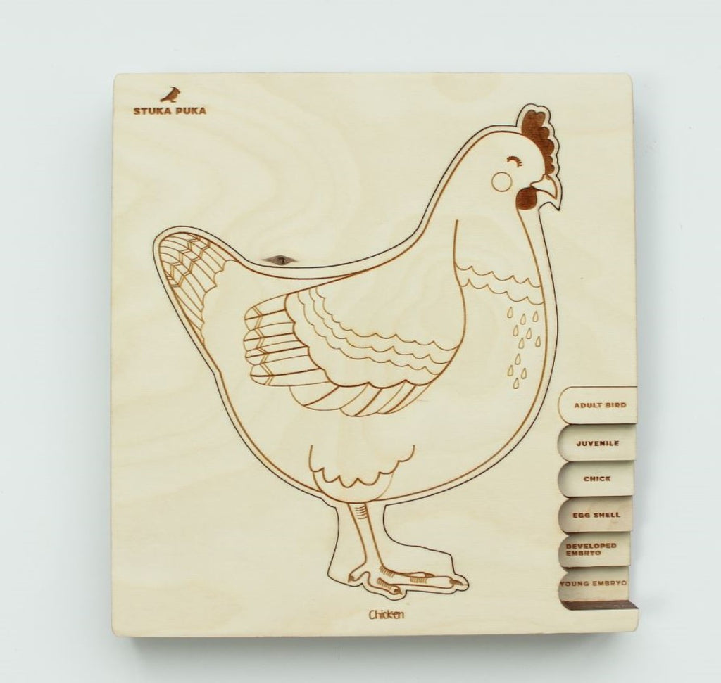 Chicken Lifecycle Wooden Puzzle