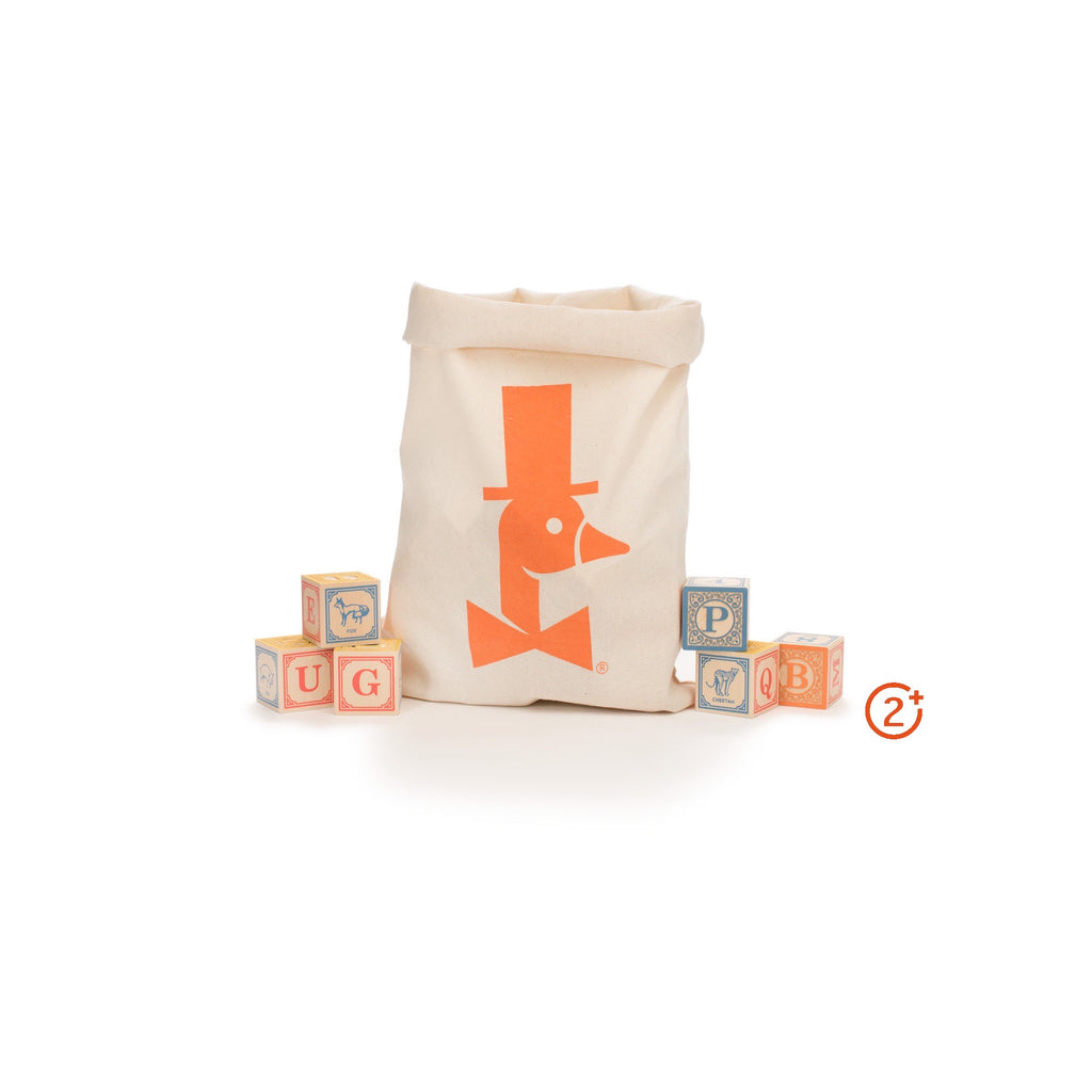 English Alphabet Blocks in a Bag