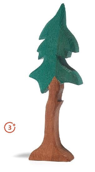 skinny spruce tree with dark green colouring and medium warm brown tall trunk with support base.
