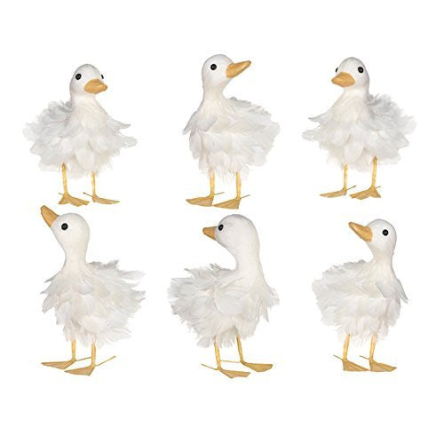 Feathered Duck Set of 6