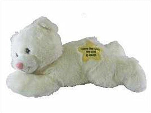 Swanson Christian Supply 64718 Toy Plush Talking Bear Now I Lay Me Down 10.5