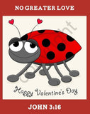 25 Large Valentine Ladybug John 3:16 Bible Tracts
