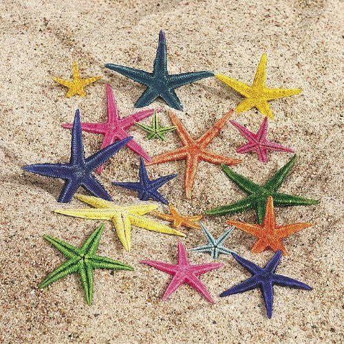 Natural Dyed Starfish [Toy]